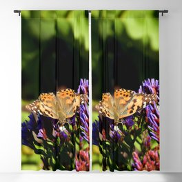 Painted Lady on Statice Blooms Blackout Curtain