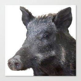 Wild Boar Vector Canvas Print