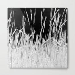Rye's field Metal Print