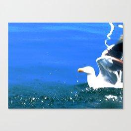 SeaSkull Canvas Print