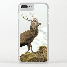 Red Deer Stag in Winter Clear iPhone Case