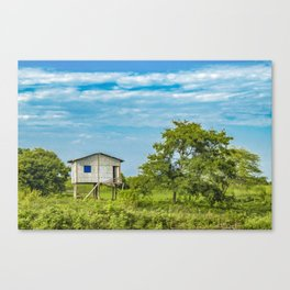 Traditional Cane House at Tropical Meadow, Guayas District, Ecuador Canvas Print