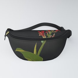 Canna Indica Mary Delany Delicate Paper Flower Collage Black Background Floral Botanical Fanny Pack
