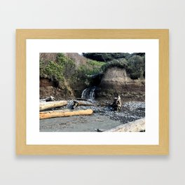 Kalaloch, Washington Framed Art Print