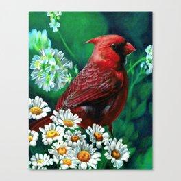 Cardinal Colored Pencil Bird Drawing Flower Artwork Canvas Print