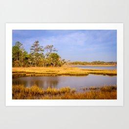Coastal Outer Banks Landscape on a Summer Day Art Print