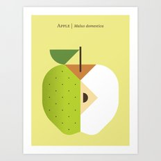 Fruit: Apple Golden Delicious Art Print