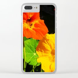 Spring is Here Two Clear iPhone Case