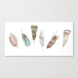 Feather collection in nature colors Canvas Print