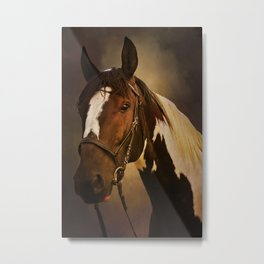 Paint Horse Portrait Metal Print