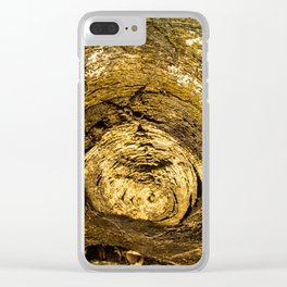 Wood trunk Clear iPhone Case