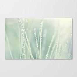 grass III Canvas Print