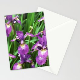 LILAC PURPLE IRIS GARDEN Stationery Cards