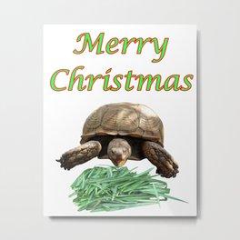 Sulcata Tortoise - Merry Christmas Metal Print