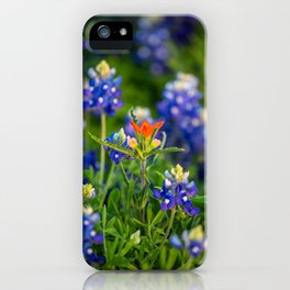 Stand Out - Indian Paintbrush Surrounded by Texas Bluebonnets iPhone Case