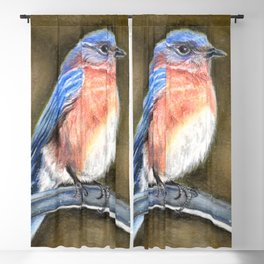 Bluebird Perched by Laurie Leigh Nature Art Blackout Curtain