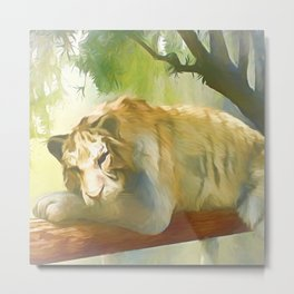 Chilling Tiger Metal Print