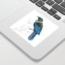Tui, New Zealand native bird Sticker