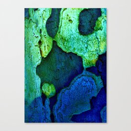 Nature in green blue Canvas Print