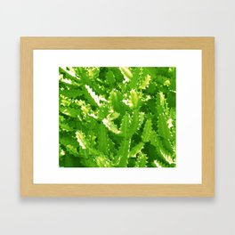 Cactus Pattern (Green version) Framed Art Print