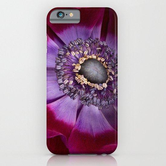 Anemone Coronaria - Macro iPhone & iPod Case