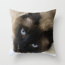 Siamese Soulful Expression Throw Pillow