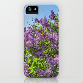 Lilac2 iPhone Case