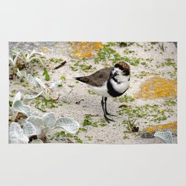 Two Ring Plover Rug