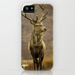 Red Deer Stag in Autumn iPhone Case