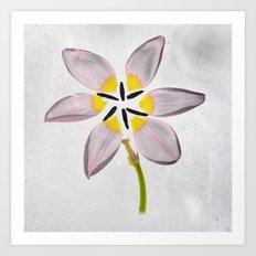 Cuddling Tulips Botanical Blueprints 2 Art Print