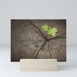 New Life from Old Tree Mini Art Print