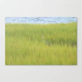 Southern Harbor Canvas Print