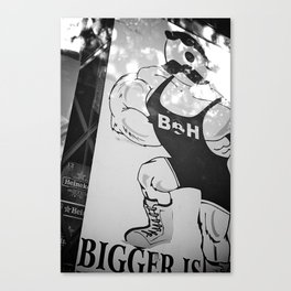 STR-05 Canvas Print