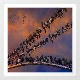 Pigeon Gangs Art Print