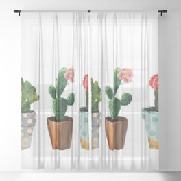 Three Cacti With Flowers On White Background Sheer Curtain