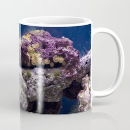 Fish Tank Coffee Mug