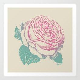 rosa rosae rosarum Art Print