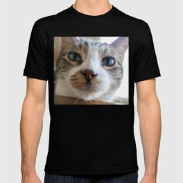 Kiko the Cat T-shirt