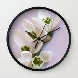 Snowdrops - First Spring Flowers Wall Clock
