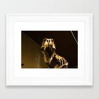 t rex Framed Art Prints featuring T-Rex by Vito Fabrizio Brugnola