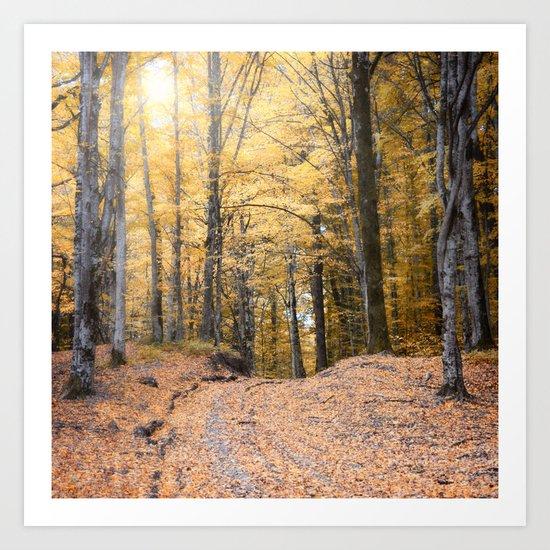 A Walk Through A Dream Forest Art Print