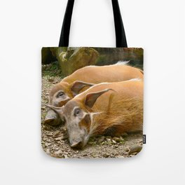 Red River Hogs taking a nap Tote Bag