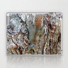 Find The Squirrel Laptop & iPad Skin