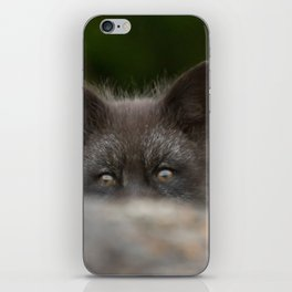 Peek-a-boo iPhone Skin