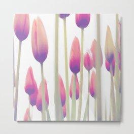 Tulip sunset Metal Print