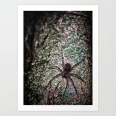 Creepy Spider Art Print