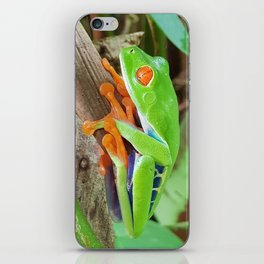 Costa rica wild nature red eye frog iPhone Skin
