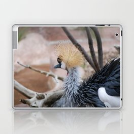 Spiked Hair Laptop & iPad Skin