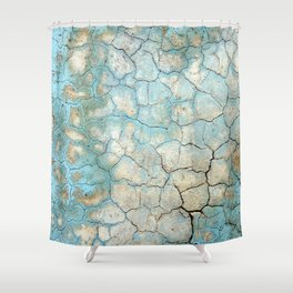Corroded Beauty Shower Curtain