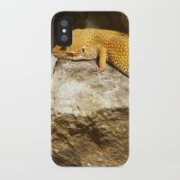 lizard iPhone & iPod Cases featuring Lizard by GardenGnomePhotography